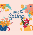 hello spring pot vase with flowers foliage vector image