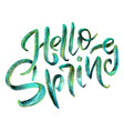 lettering - hello spring sweet spring inspiration vector image vector image