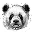 panda graphic monochrome hand-drawn portrait vector image vector image