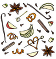collection of spices and fruit slices anise vector image