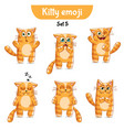 set of cute cat characters set 5 vector image vector image