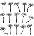 Set silhouettes of palm trees isolated on white vector image