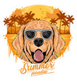 summer golden dog with coconut tree island vector image vector image