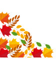 autumn leaves branches foliage frame vector image