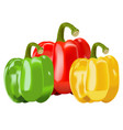 capsicum vegetables bell pepper vector image
