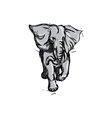 Elephant Rampaging Isolated Drawing vector image