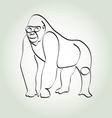 Gorilla in minimal line style vector image vector image