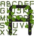 shamrock alphabet vector image