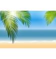 Summer Time Palm Leaf Seaside Background vector image vector image