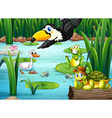 A pond with animals vector image