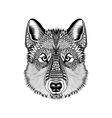 entangle stylized wolf face hand drawn guata vector image vector image