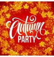 Fall Party Template for Autumn poster banner vector image vector image