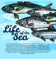 poster of fish sea life or oceanarium vector image vector image