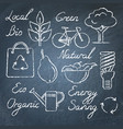 set eco icons and lettering on chalkboard vector image vector image