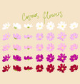 set of cosmos flowers vector image vector image