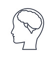 silhuette human head man with brain thinking vector image vector image