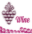 wine grapes doodle vector image