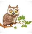 Cute owl sitting on a branch vector image