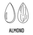almond icon outline style vector image vector image
