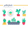 cacti and succulents collection - set vector image vector image