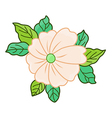 flower isolated vector image vector image
