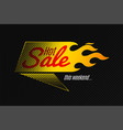 hot sale banner template design with flame and vector image vector image