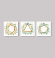 set of golden frames and leafs wreath vector image vector image