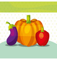 vegetables fresh organic healthy pepper pumpkin vector image