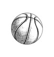 drawing basketball ball in black color vector image vector image