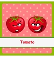 Tomato funny characters on light red background vector image