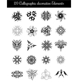 Set of calligraphic decorative elements vector image