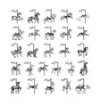 carousel animal collection set vector image