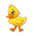 cartoon duck isolated vector image vector image