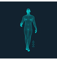 Man Stands on his Feet Human Body Model vector image