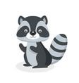 Raccoon character flat style isolated
