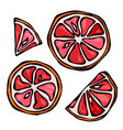 set slices of grapefruit isolated on white vector image