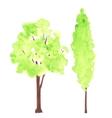 Watercolor green trees vector image vector image