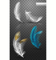 isolated falling fluffy twirled feathers on vector image vector image