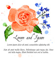 rose and forget-me-flower vector image vector image
