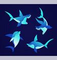 shark - modern set of flat vector image vector image
