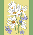 daisies card vector image vector image