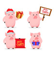 merry christmas greeting card with cartoon pig vector image