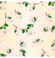 seamless texture branch flowers wild cherry vector image vector image