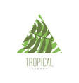 tropical logo design triangle badge with palm vector image vector image