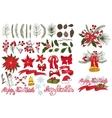 Christmas tree branchesflowersdecor kit vector image