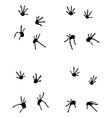 footprints lizard vector image vector image