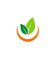 green leaf abstract organic logo vector image