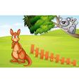 Kangaroo and koalas vector image vector image