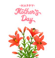 Mothers day card with red lilies with water drops