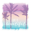 palm beach t-shirt graphic and beautiful lettering vector image vector image